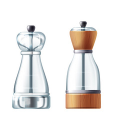 3d realistic glass salt shaker peppermill vector image