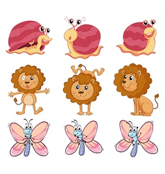 A lion a snail and a butterfly vector image vector image