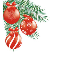christmas tree branches with red balls vector image
