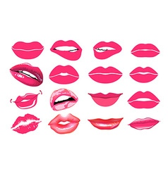 collage pink lips Set of isolated women lips on vector image