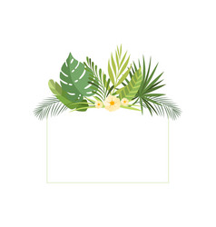 exotic tropical leaves banner rainforest foliage vector image