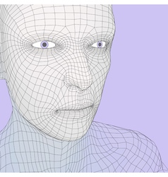 head person from a 3d grid human head wire vector image