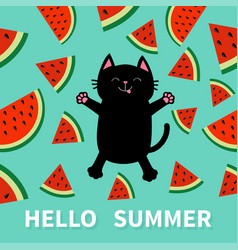 hello summer black cat jumping or making snow vector image