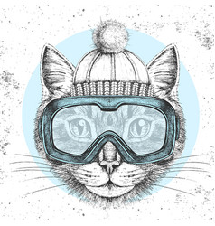 Hipster animal cat in winter hat vector