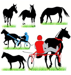 jockeys and horses set vector image