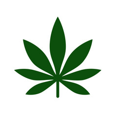 Marijuana leaf icon logo template medical vector