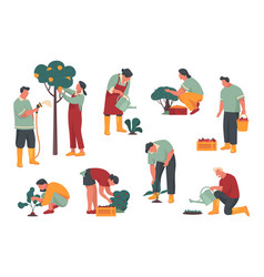 people or characters pick harvest or crop vector image