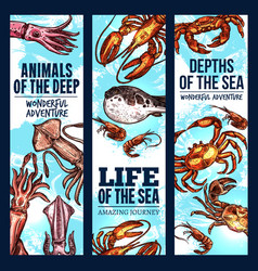 Seafood sketch banner of deep sea fish and animal vector