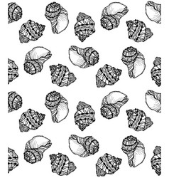 seamless pattern from black seashell vector image