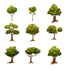 set of different cartoon style trees vector image