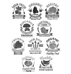 icons of farm fresh organic vegetables vector image