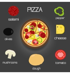 Pizza and ingredients - classic pizza elements vector image