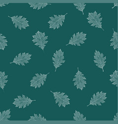 seamless pattern of white autumn leaves of red oak vector image