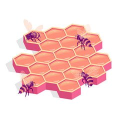 bees on comb isolated isometric vector image