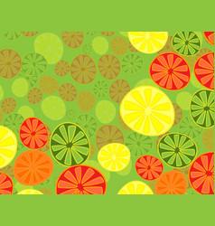 Collection citrus slices - orange lemon lime vector