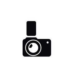 isolated photographic icon flash element vector image