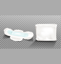 Sanitary napkin and blank plastic package clip art vector