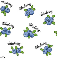 seamless pattern blueberry with word text vector image
