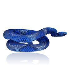 snake4 vector image