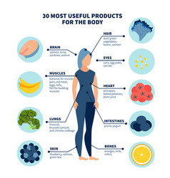 Thirty most healthy products for body in vector