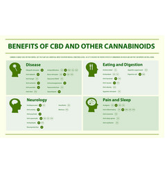 Benefits cbd and other cannabinoids horizontal vector