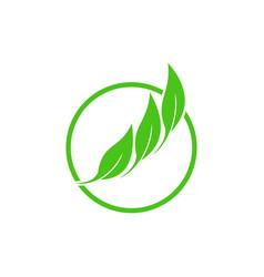 circle 3 leaf vector image