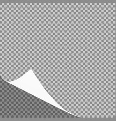 Curled paper sheet corner or page curl vector
