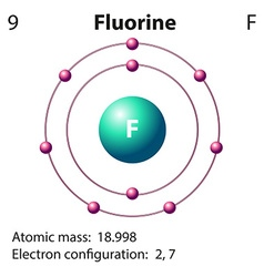 Diagram representation of the element fluorine vector image
