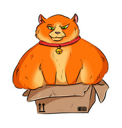 Funny fat overweight cat trying to fit into a vector