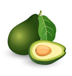 ripe avocado cut in half with leaf vector image