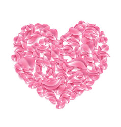 rose cherry sakura petal in heart shape vector image
