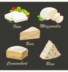 Set of different kinds of white cheese Realistic vector