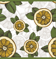 summer pattern with oranges mint and vector image