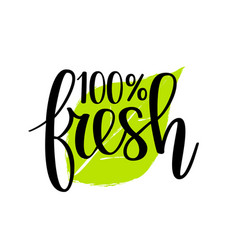 100 fresh lettering design vector image