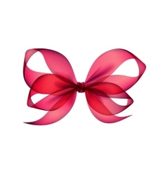 Pink Transparent Bow Top View on White Background vector image