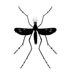 Mosquito silhouette vector