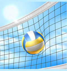 realistic beach volley ball in net blue sky vector image