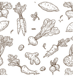 root food sketch seamless pattern celery and vector image