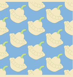 Squash vegetable pattern vector