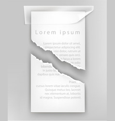 torn paper for text ripped sheet vector image