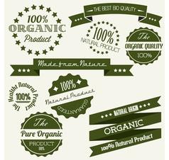 dark green retro bio elements vector image