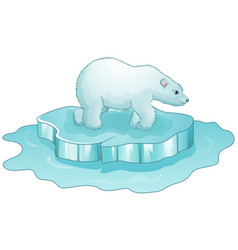 cartoon polar bear standing on ice floe vector image