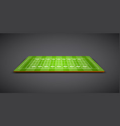 clear green rugor soccer field vector image