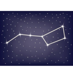 Constellation ursa major vector