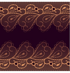 Decorative background with two lacy borders vector