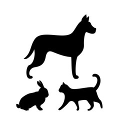 dog puppy cat and bunny silhouettes icons set vector image