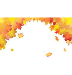 Falling leaves on white background vector