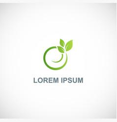 green leaf round organic logo vector image