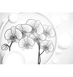 Hand Drawing Orchid Flower vector image