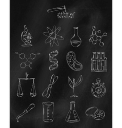 Linear hand drawn icons on chalk Board vector image